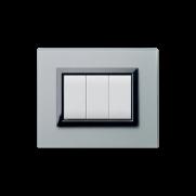 Serie DOMUS con placca Vera grigio argentato finitura satinata